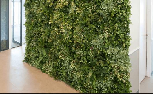 voordelen plantenwand woonkamer