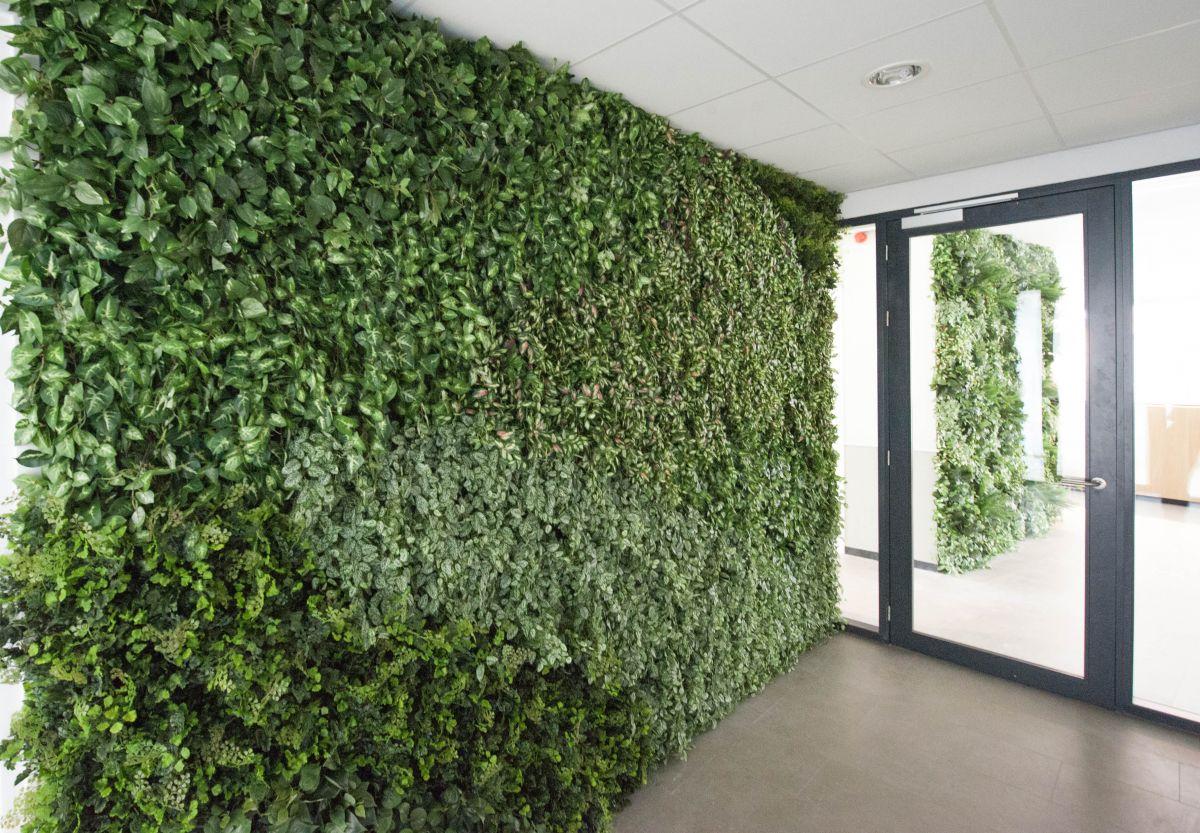 voordelen plantenwand
