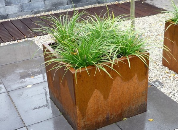 Welke plant kiezen voor een cortenstalen plantenbak in de woonkamer?