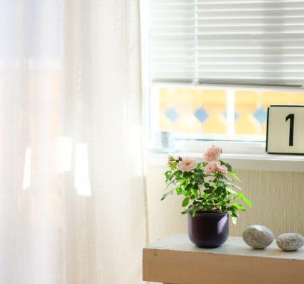 Het belang van raamdecoratie in huis